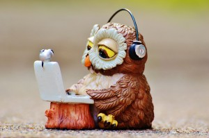 owl-947734_1280