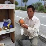 激安沖縄県産マンゴーの買い方!瀬長島がオススメ。簡単な切り方も紹介