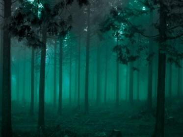 怖い夢〜幽霊が出てくる原因8パターンとは?