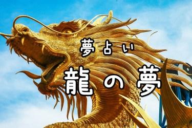 【夢占い】龍の夢20の意味|乗る・色など