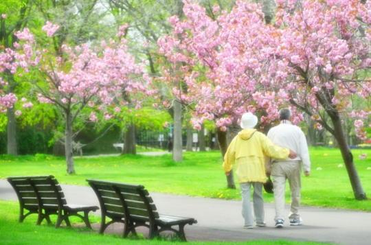 定年退職後の夫婦 過ごし方