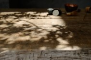 建築設計室Morizo- ウェブサイト用写真撮影