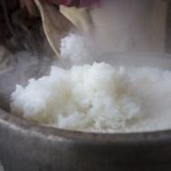 新嘗祭・五穀豊穣・新米・勤労感謝の日