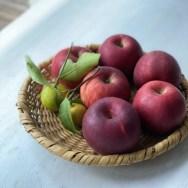りんご・林檎・リンゴ・風邪