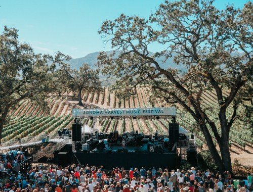 Sonoma Harvest Music Festival at B.R. Cohn Winery