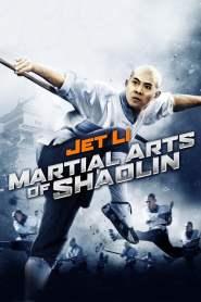 เสี้ยวลิ้มยี่ 3 มังกรน่ำปั๊ก Martial Arts of Shaolin (1986)