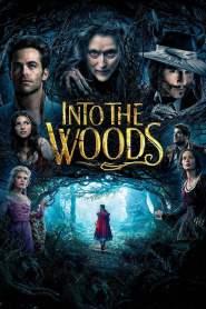 อินทู เดอะ วู้ด มหัศจรรย์คำสาปแห่งป่าพิศวง Into the Woods (2014)