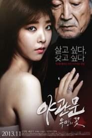 รัก l หลอน l ซ่อนเร้น Door to the Night (2013)