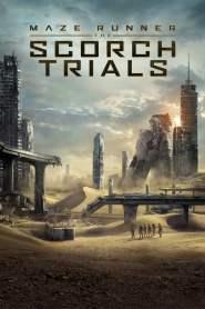 เมซ รันเนอร์ สมรภูมิมอดไหม้ Maze Runner: The Scorch Trials (2015)