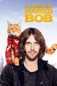 บ๊อบ แมว เพื่อน คน A Street Cat Named Bob (2016)