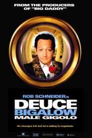 ดิวซ์ บิ๊กกะโล่ ไม่หล่อแต่เร้าใจ Deuce Bigalow: Male Gigolo (1999)