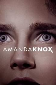 อแมนดา น็อกซ์ Amanda Knox (2016)