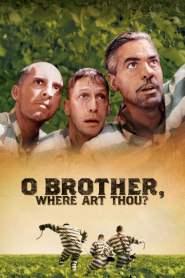 สามเกลอ พกดวงมาโกย O Brother, Where Art Thou? (2000)