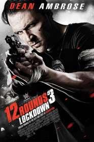 ฝ่าวิกฤติ 12 รอบ 3 :ล็อคดาวน์ 12 Rounds 3: Lockdown (2015)