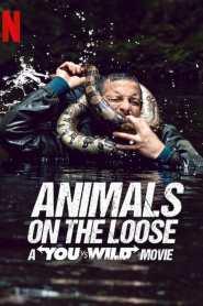 ผจญภัยสุดขั้วกับแบร์ กริลส์ เดอะ มูฟวี่ Animals on the Loose: A You vs. Wild Interactive Movie (2021)