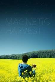 Magnetic Harvest (2019)