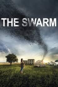 ตั๊กแตนเลือด The Swarm (2020)