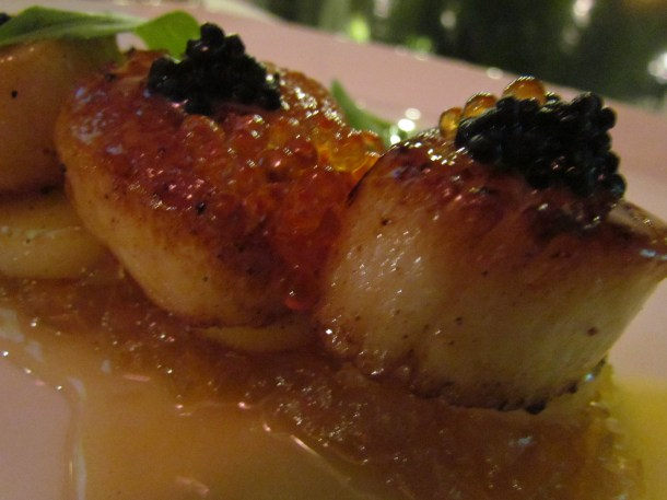 close up of pan seared Canadian sea scallops on thyme fondant, roasted shallots, noilly prat sauce, caviar & micro greens