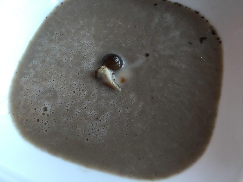 Porcini cappuccino with black olive powder