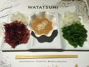 watatsumi Kaison Sarada