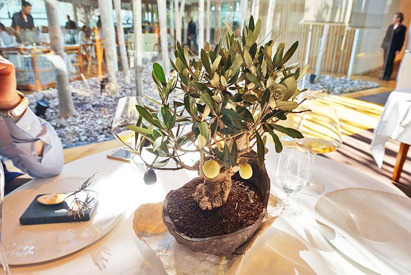 Bonsai de Olivo: Helado de oliva verde y tempura de oliva negra. Entrante del Menú Degustación 2019 de El Celler de Can Roca.