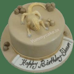 chameleon-cake-yummycake