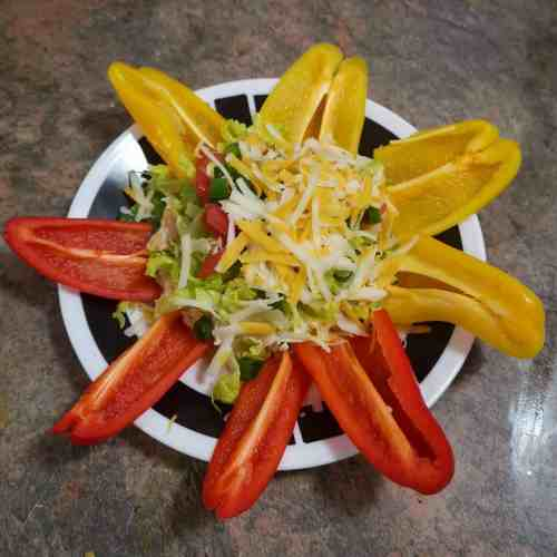 Sliced Bell peppers arranged radially around low carb nacho dip