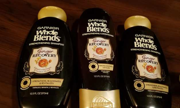 FREE Garnier Ginger Recovery Sample