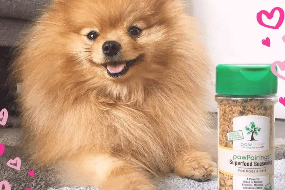 Free pawPairings Superfood Seasonings Today