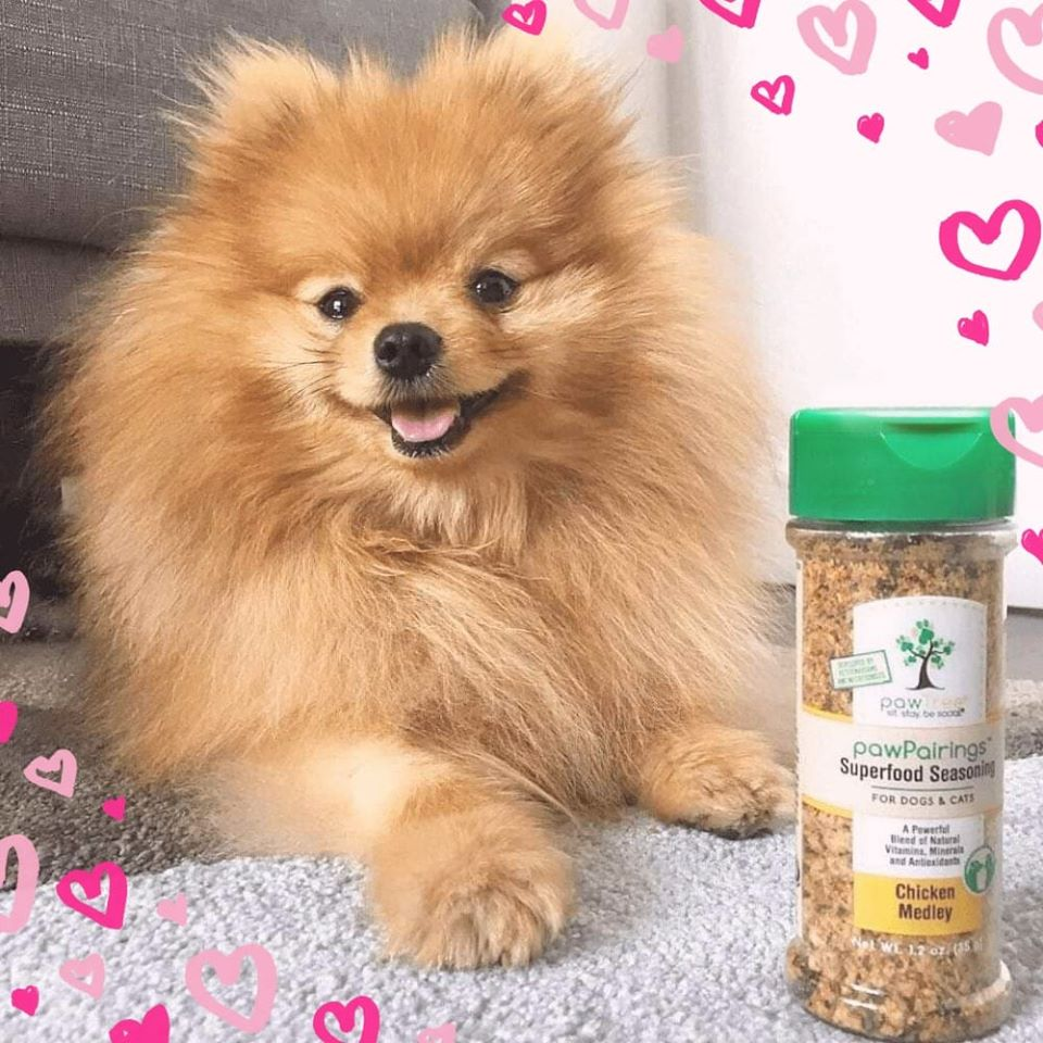 free-pawpairings-superfood-seasonings-today