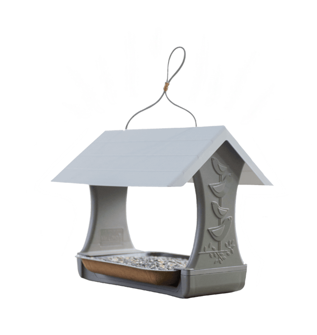 mr-canary-bird-and-breakfast-feeder-giveaway
