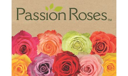 The Real Passion Roses Giveaway