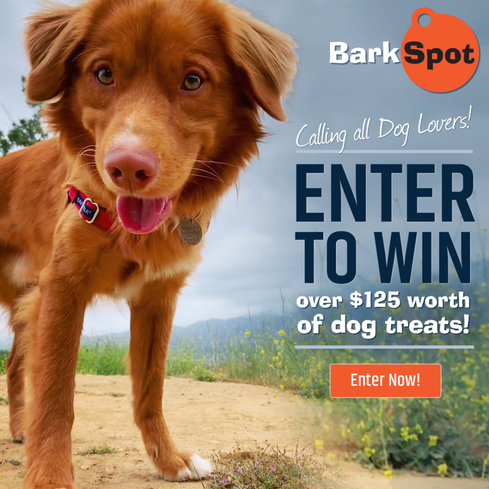 barkspot-treat-giveaway