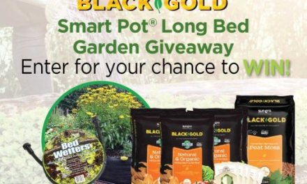 Black and Gold Long Garden Giveaway