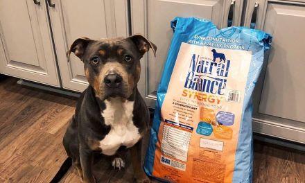 FREE Natural Balance Pet Food Chatterbox