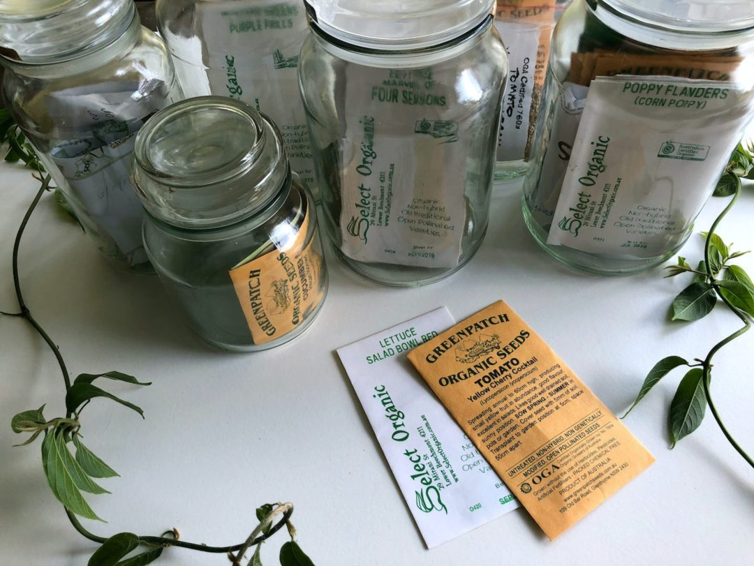 butterfly-garden-starter-pack