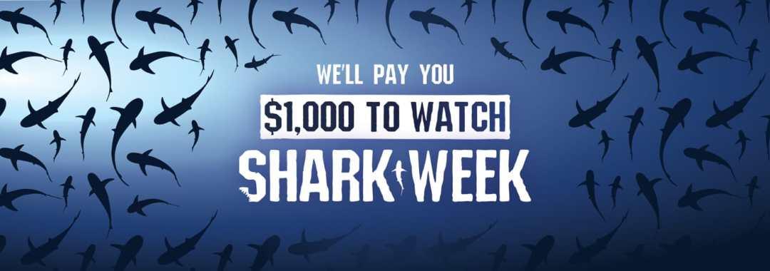watching-shark-week