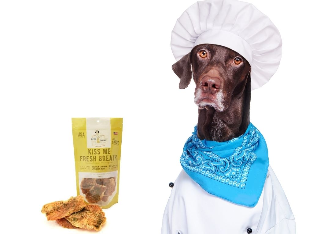 free-mika-and-sammys-dog-treat-sample