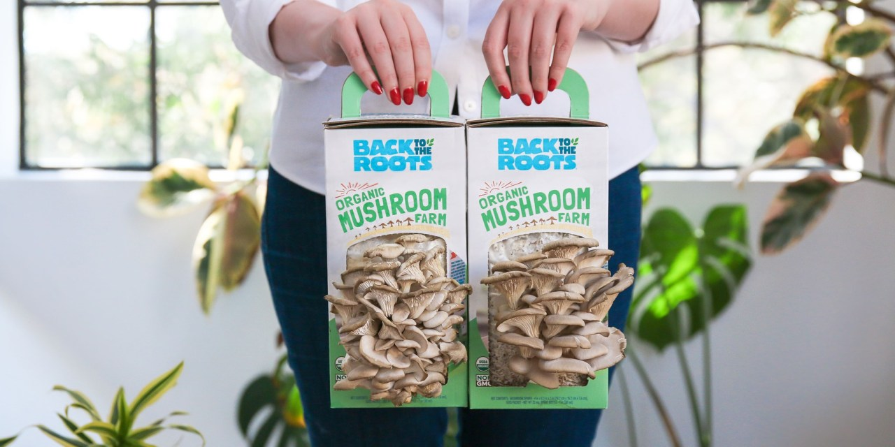 FREE Back to Roots Grow Kits