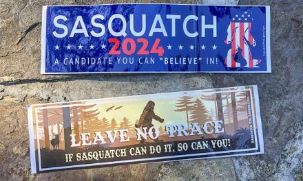 Free Sasquatch 2024 Bumper Sticker