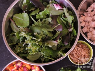 Cranberry Chicken Salad 2