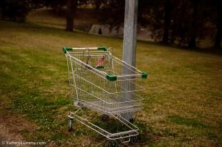 Shopping trolleys of Belconnen