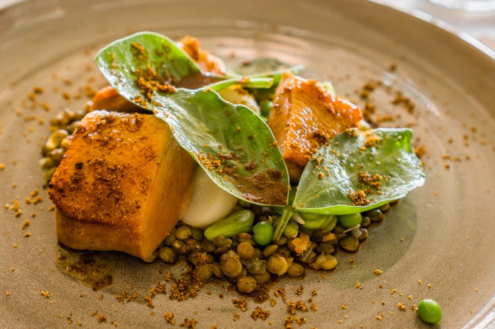 The photograph is of a main meal of Duck breast, almond tofu, mustard and legumes