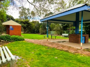 Lions Park Violet Town road trip to Bendigo