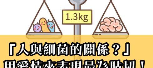 「人與細菌的關係?」用愛情來表現最為貼切!-台灣養生網