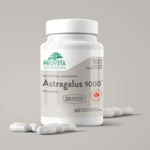 YumNaturals Emporium - Bringing the Wisdom of Mother Nature to Life - Provita Astragalus 9000