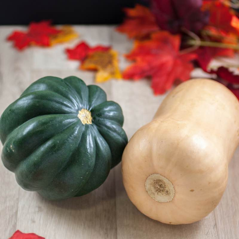 Get Your Squash On!