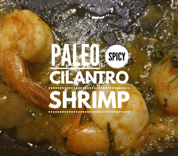 Paleo Lime Cilantro Shrimp