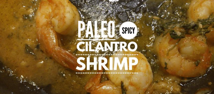 Paleo Spicy Cilantro Shrimp Recipe