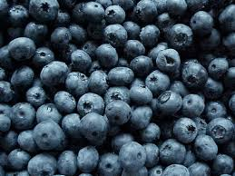 blueberry-image